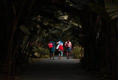 Κυρίες που περπατούν μέσω των εγκαταστάσεων στοκ εικόνα με δικαίωμα ελεύθερης χρήσης