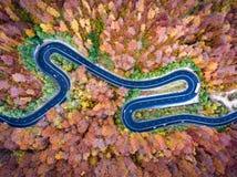 Κυρτή οδική γούρνα το δασικό γεια πέρασμα βουνών στην Τρανσυλβανία Στοκ φωτογραφία με δικαίωμα ελεύθερης χρήσης