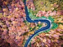 Κυρτή οδική γούρνα το δασικό γεια πέρασμα βουνών στην Τρανσυλβανία, Στοκ φωτογραφία με δικαίωμα ελεύθερης χρήσης