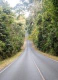 Κυρτός δρόμος στο δάσος, θέα βουνού σε Khao Yai, Pak Chong στοκ εικόνες