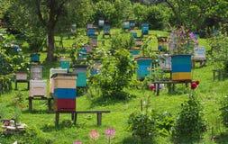 Κυψέλες μελισσών στο μελισσουργείο στους λόφους του Καύκασου Στοκ Εικόνα