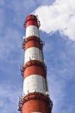 Κυψελοειδής κεραία στο σωλήνα εργοστασίων Στοκ εικόνες με δικαίωμα ελεύθερης χρήσης