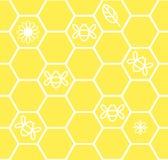 Κυψελωτό άνευ ραφής υπόβαθρο με τη μέλισσα φύλλων λουλουδιών Στοκ Εικόνες