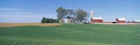 Κυλώντας αγροτικοί τομείς, μεγάλος δρόμος ποταμών, Balltown, Ν Ε Iowa Στοκ εικόνα με δικαίωμα ελεύθερης χρήσης