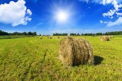Κυλώντας θυμωνιές χόρτου στην επαρχία την ηλιόλουστη ημέρα Στοκ Φωτογραφίες