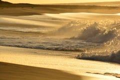 Κυλώντας κύματα της Χαβάης στην ανατολή Στοκ Εικόνες