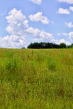 Κυλώντας λόφοι στοκ εικόνα