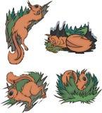 Κωμικοί σκίουροι Στοκ εικόνα με δικαίωμα ελεύθερης χρήσης
