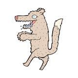 κωμικός μεγάλος κακός λύκος κινούμενων σχεδίων Στοκ Εικόνες