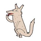 κωμικός λύκος κινούμενων σχεδίων που γλείφει το πόδι Στοκ φωτογραφία με δικαίωμα ελεύθερης χρήσης