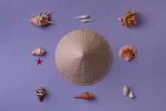 Κωνικά καπέλο και θαλασσινά κοχύλια Στοκ Εικόνα