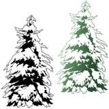 κωνοφόρο χιονώδες δέντρο απεικόνιση αποθεμάτων