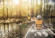 Κωπηλασία σε κανό κάτω από τον όμορφο ποταμό σε ένα δάσος κυπαρισσιών στοκ εικόνα
