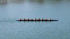 Κωπηλατώντας ομάδα πληρώματος γυναικών που επιλύει στον ποταμό απόθεμα βίντεο
