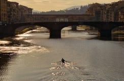 Κωπηλατώντας στον ποταμό Arno στη Φλωρεντία, Ιταλία στοκ εικόνες