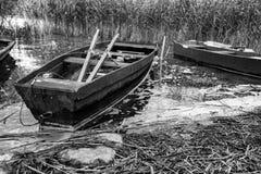Κωπηλατώντας τις βάρκες που δένονται από τη λίμνη Στοκ Εικόνες