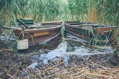 Κωπηλατώντας τις βάρκες που δένονται στον κάλαμο Στοκ Φωτογραφία