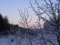 Κωφό χωριό στο υπόβαθρο της χειμερινής αυγής Στοκ φωτογραφίες με δικαίωμα ελεύθερης χρήσης