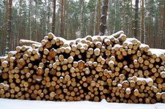 Κόβουν το ξύλο Στοκ φωτογραφία με δικαίωμα ελεύθερης χρήσης