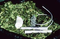 Κόκα leafes, ραβδιά του δυναμίτη και θρυαλλίδες όπως παρούσες για τους ανθρακωρύχους στο Ποτόσι, Βολιβία στοκ εικόνα