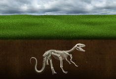 Κόκκαλα δεινοσαύρων, απολίθωμα, παλαιοντολογία, σκελετός διανυσματική απεικόνιση