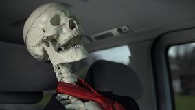 Κόκκαλα στο αυτοκίνητο backseat που οδηγεί φιλμ μικρού μήκους