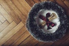 Κόκκαλο δώρων Στοκ φωτογραφία με δικαίωμα ελεύθερης χρήσης