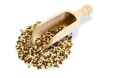 Κόκκινα άσπρα quinoa σιτάρια στο άσπρο υπόβαθρο στοκ φωτογραφίες