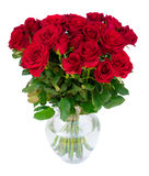 Κόκκινα ανθίζοντας τριαντάφυλλα Στοκ Εικόνα