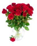 Κόκκινα ανθίζοντας τριαντάφυλλα Στοκ Φωτογραφία
