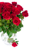 Κόκκινα ανθίζοντας τριαντάφυλλα Στοκ φωτογραφίες με δικαίωμα ελεύθερης χρήσης