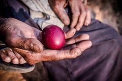 Κόκκινα αυγά στο παλαιό ανθρώπινο χέρι στοκ εικόνα