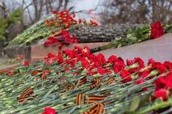 Κόκκινα γαρίφαλα και αιώνια φλόγα Στοκ Εικόνες