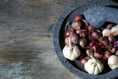 Κόκκινα και άσπρα κρεμμύδια στο κονίαμα Στοκ Εικόνες