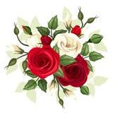 Κόκκινα και άσπρα τριαντάφυλλα και λουλούδια lisianthus επίσης corel σύρετε το διάνυσμα απεικόνισης Στοκ Εικόνα