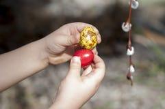 Κόκκινα και κίτρινα βαμμένα αυγά ορτυκιών στα χέρια παιδιών ` s Στοκ φωτογραφία με δικαίωμα ελεύθερης χρήσης