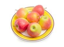 Κόκκινα και κίτρινα μήλα σε ένα πιάτο Στοκ εικόνα με δικαίωμα ελεύθερης χρήσης