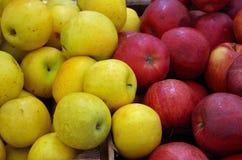 Κόκκινα και κίτρινα μήλα έτοιμα για την αγορά Στοκ Φωτογραφίες