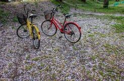 Κόκκινα και κίτρινα ποδήλατα που σταθμεύουν στον κήπο Στοκ φωτογραφία με δικαίωμα ελεύθερης χρήσης