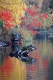 Κόκκινα και κίτρινα χρώματα μιας ημέρας φθινοπώρου στοκ εικόνες