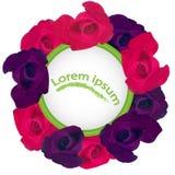 Κόκκινα και πορφυρά τριαντάφυλλα με μορφή ενός σχεδίου κύκλων για μια ευχετήρια κάρτα Στοκ εικόνα με δικαίωμα ελεύθερης χρήσης