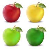 Κόκκινα και πράσινα μήλα καθορισμένα Photo-realistic διανυσματική απεικόνιση ενός μήλου σε τέσσερα χρώματα σχεδίου Στοκ φωτογραφία με δικαίωμα ελεύθερης χρήσης