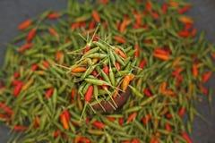 Κόκκινα και πράσινα πιπέρι/τσίλι Στοκ εικόνα με δικαίωμα ελεύθερης χρήσης