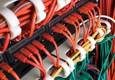 Κόκκινα καλώδια δικτύων που συνδέονται με το διακόπτη Στοκ φωτογραφία με δικαίωμα ελεύθερης χρήσης