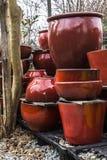 Κόκκινα κεραμικά δοχεία εγκαταστάσεων κοντά στο δέντρο Στοκ Φωτογραφία