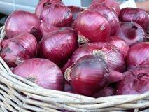 Κόκκινα κρεμμύδια Στοκ Εικόνες