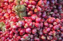 Κόκκινα κρεμμύδια από το οργανικό αγρόκτημα Στοκ Εικόνες