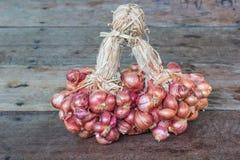 Κόκκινα κρεμμύδια στοκ εικόνες με δικαίωμα ελεύθερης χρήσης