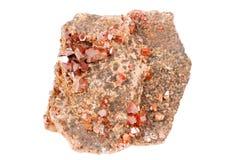 Κόκκινα κρύσταλλα VVanadinite, μετάλλευμα στο άσπρο υπόβαθρο Στοκ Εικόνες