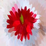 Κόκκινα κτυπήματα βουρτσών λουλουδιών Στοκ Εικόνες